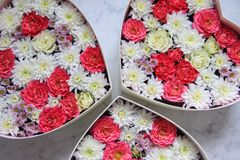 Gift box with heart shaped flowers on grey marble background royalty free stock photography