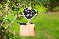Gift box with lavender twig hanging on a tree branch, for you lettering on clip label, Valentine, wedding, love, romantic concept Royalty Free Stock Photos