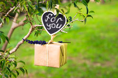 Gift box with lavender twig hanging on a tree branch, for you lettering on clip label, Valentine, wedding, love, romantic concept, Stock Photo