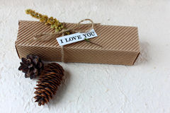 Gift box with a love note and cones Royalty Free Stock Image