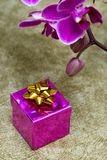 Gift box with orchid Stock Images
