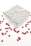 Gift box with ornaments Stock Images