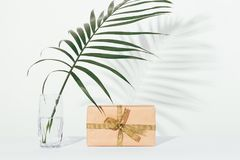 Gift box and a palm leaf in a glass of water royalty free stock photo