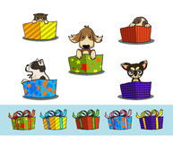 Gift box. And pets vector . You can swop pet and ribbin on box Vector Illustration