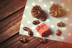 Gift box and pine cones Royalty Free Stock Image