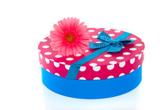 A gift-box with a pink gerbera Royalty Free Stock Images