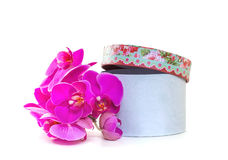 Gift box with a pink orchid Stock Images