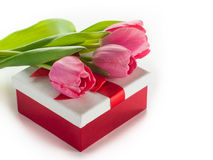 Gift box with pink tulips Royalty Free Stock Photos