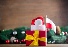 Gift box with Poland flag and Santa Claus hat. With pine cones and branches on background. Image with Christmas holiday theme Stock Images