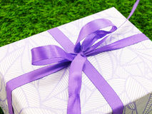 Gift box present with ribbon on green grass background Royalty Free Stock Photos