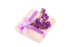 Gift box with purple ribbon bow, isolated on white Stock Photos