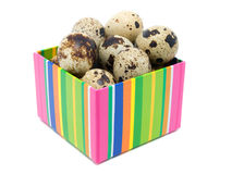 Gift box with quail eggs Stock Image