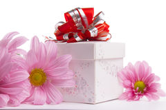 Gift-box with red bow with pink daisies Stock Photos