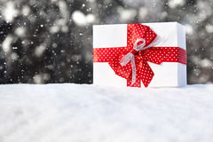 Gift box with red bow in the snow on forest background, christmas holiday symbol, winter outdoor with snowfall Royalty Free Stock Photos