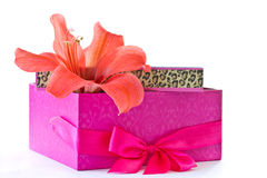 Gift box and a red flower Stock Photography