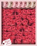 Gift box with red roses and macaroons. Vector realistic top view. Illustration Royalty Free Stock Photography