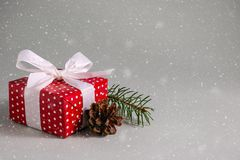 Gift box in red wrapping paper with white bow and pine cone under snow. Gift box in red wrapping paper with white polka dots, white bow and pine cone under snow royalty free stock images
