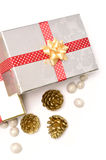 Gift box with ribbon and decoration Stock Image