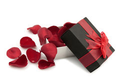 Gift box with rose petals. Black gift box with ribbon and rose petals isolated on white Stock Images
