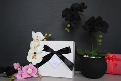 Gift box with a sexy lingerie. Flowers and present for the women. Festive underwear gift with black orchid for a lady Royalty Free Stock Photography