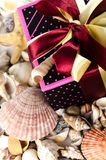 Gift box and shells Royalty Free Stock Photo
