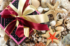 Gift box and shells Royalty Free Stock Image