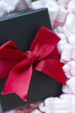 Gift box in shipping package Royalty Free Stock Photo
