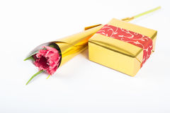 Gift box and a single tulip  on white Royalty Free Stock Photos