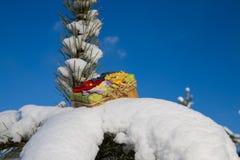 Gift box on snow Royalty Free Stock Photo