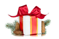Gift box,  tree branch, cone, іsolated on white background Stock Images