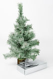 Gift box under fir tree Royalty Free Stock Images