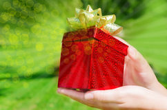 Gift box in woman's hands Stock Images