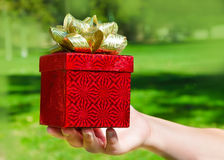 Gift box in woman's hands Royalty Free Stock Photography