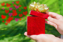 Gift box in woman's hands Royalty Free Stock Images