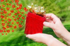 Gift box in woman's hands Stock Photos