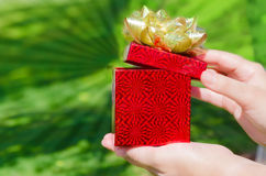 Gift box in woman's hands Royalty Free Stock Image