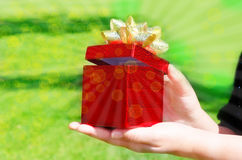 Gift box in woman's hands Stock Image
