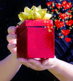 Gift box in woman's hands Royalty Free Stock Photos