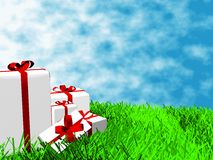 Gift boxes. On the grass Royalty Free Stock Images