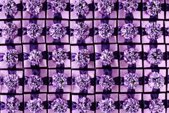 Gift Boxes Background. Flat lay full frame background of violet color gift boxes with pretty bows Stock Photo