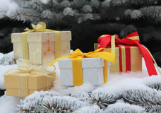 Gift boxes with bows on fir-tree branches in snow Royalty Free Stock Image
