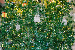 Gift boxes, Christmas tree Stock Photo