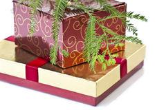Gift boxes and Christmas tree Stock Images