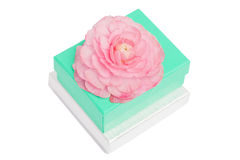 Gift boxes with chrysanthemum on top Royalty Free Stock Images