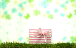 Gift boxes laying on the grass Stock Images