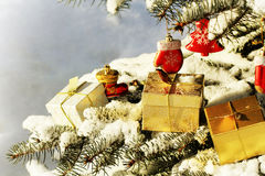 Gift boxes lying on branch of fir-tree stock photo