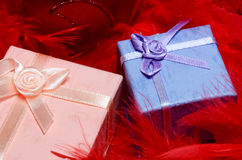 Gift boxes over red feathers Stock Photography