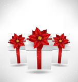 Gift boxes with  poinsettia on grayscale Stock Photo
