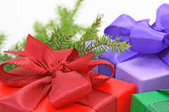 Gift boxes and tree bough. On white background Stock Photography