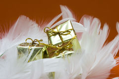 Gift boxes on white feather Stock Image